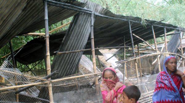 দৌলতপুরে পূর্ব শত্রুতার জেরে পোর্ল্ট্রি ফার্মে আগুন