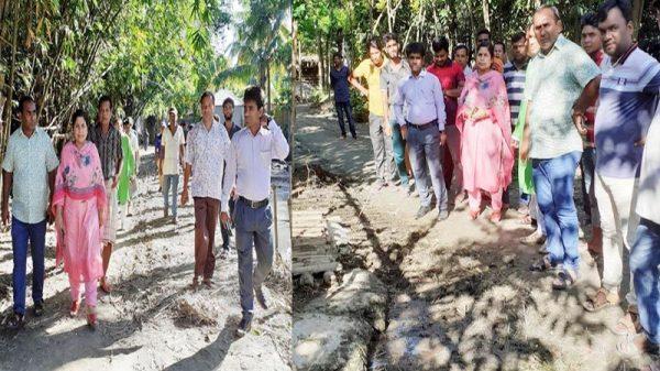 দৌলতপুরের ছাতারপাড়ায়  ৩৮ ডেঙ্গু রোগি শনাক্ত : আতঙ্ক পাশের গ্রামগুলোতে