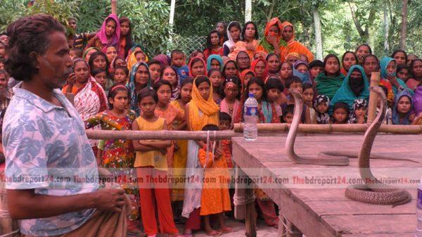 ঝিনাইদহে গ্রাম বাংলার ঐহিত্যবাহী ঝাপান খেলা অনুষ্ঠিত
