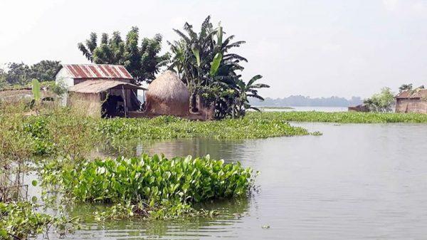 বন্যা কবলিত কুমারখালীর জগন্নাথপুর ইউনিয়ন