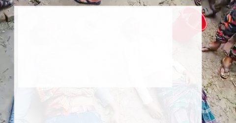 ঝিনাইদহের শৈলকুপায় নসিমন নিয়ন্ত্রন হারিয়ে গাছের সাথে ধাক্কা লেগে ২ জন নিহত