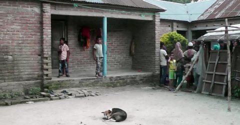 দৌলতপুরে বাকপ্রতিবন্ধী স্কুল ছাত্রী ধর্ষণের ঘটনায় থানায় মামলা