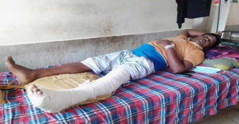 ভেড়ামারায় সন্ত্রাসী হামলায় আসলাম মেম্বার গুরুত্বর আহত: থানায় অভিযোগ দায়ের