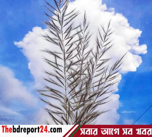 শরৎ আকাশ/খন্দকার জালাল উদ্দীন